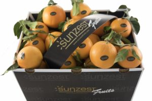 sunzest-fruits-orangen
