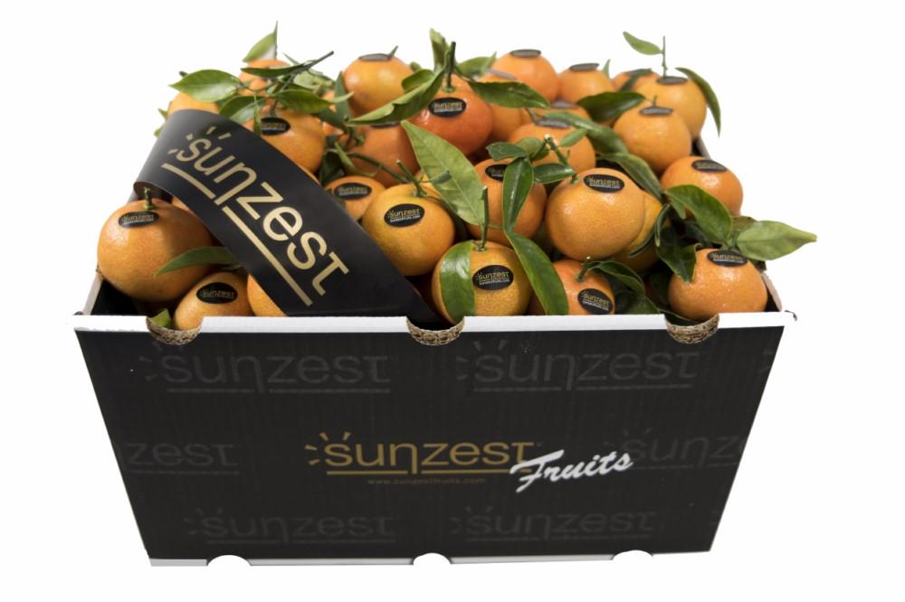 mandarine-sunzestfruits
