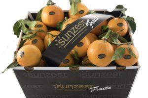 sunzest-fruits-fruits_01