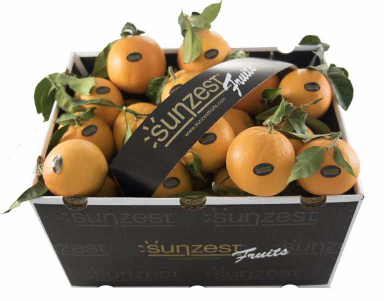 sunzest-fruits-orangen