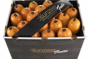 sunzest-fruits-früchte_03